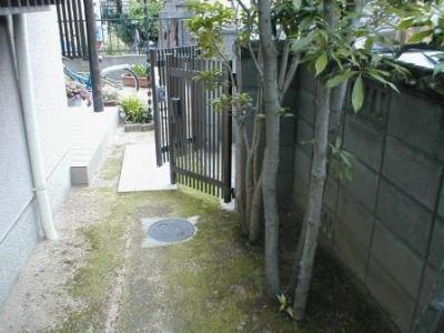 ブロック塀修理前04内部植木付近.JPG