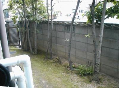 ブロック塀修理前05内部植木付近全景.JPG