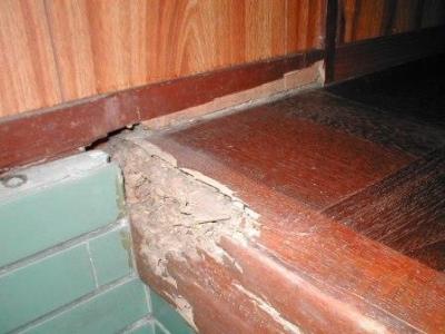 玄関床修理02框の白蟻被害.JPG