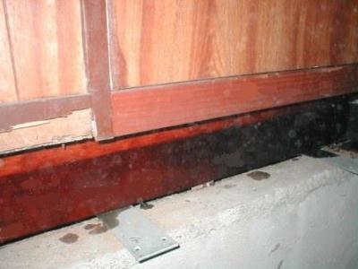 玄関床修理08土台の白蟻被害除去後.JPG