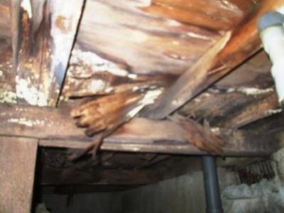 洗濯場床修理09流し台の床下腐食状況.JPG