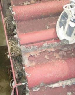トイ詰まり修理01一階北側?状況調べゴミ詰まり例.JPG