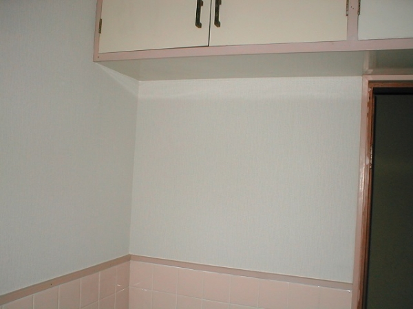 洗面所の内壁クロス張替え?吊り棚付近.JPG