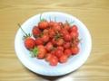イチゴとサクランボ