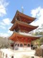 向上寺 国宝 三重塔