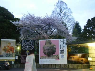 f:id:kubohashi:20090523001912j:image
