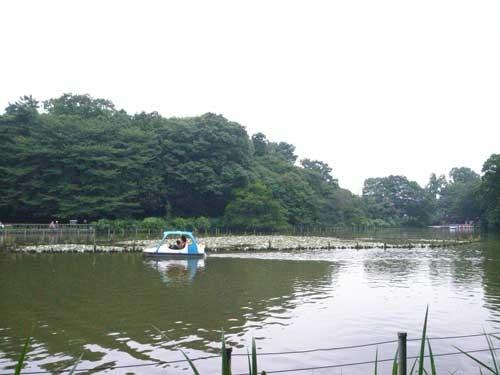 f:id:kubohashi:20090717220730j:image