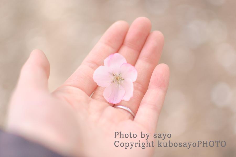 f:id:kubosayoPHOTO:20170314090045j:plain