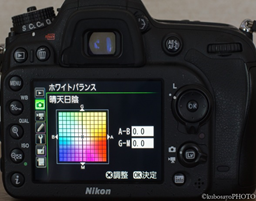 f:id:kubosayoPHOTO:20170524155300p:plain