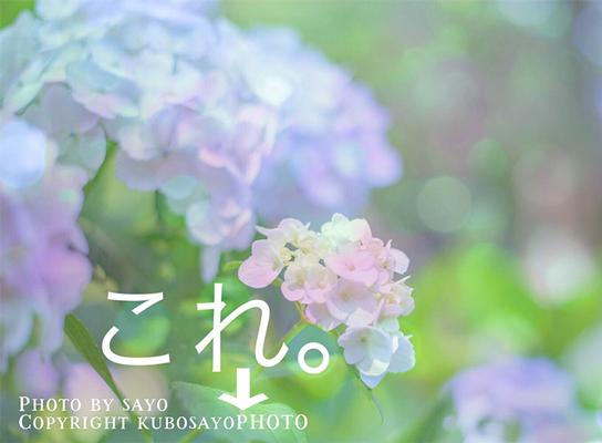 f:id:kubosayoPHOTO:20180118091840j:plain