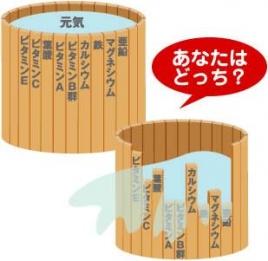 f:id:kubota-yuki:20150331211711j:plain