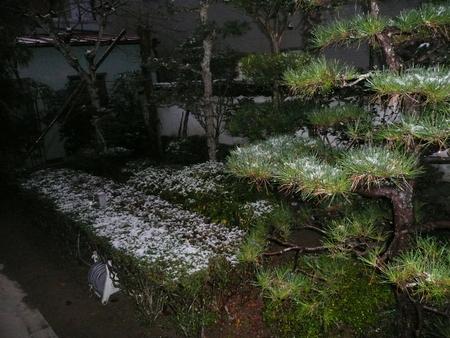 f:id:kuboyumi:20071231150100j:image