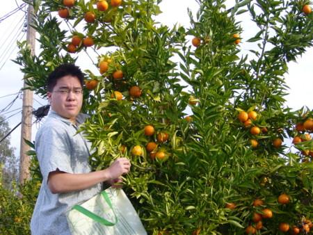 f:id:kuboyumi:20101225092810j:image