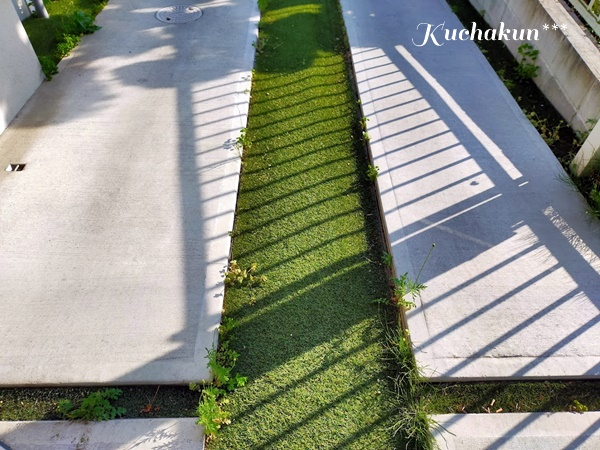f:id:kuchakun:20200507161712j:plain