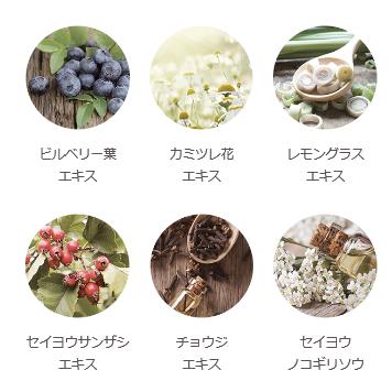f:id:kuchikomi-joho:20170724152616p:plain