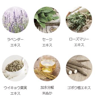 f:id:kuchikomi-joho:20170724152653p:plain