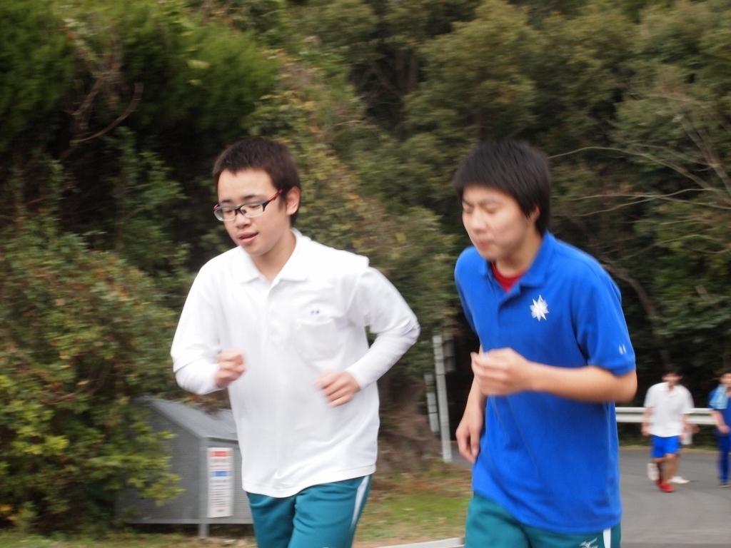 f:id:kuchinotsu:20190207151339j:plain