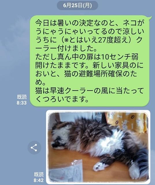 f:id:kuesu_air:20180628183516j:plain