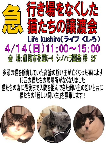 f:id:kugatsusuiyou:20190411221759j:plain