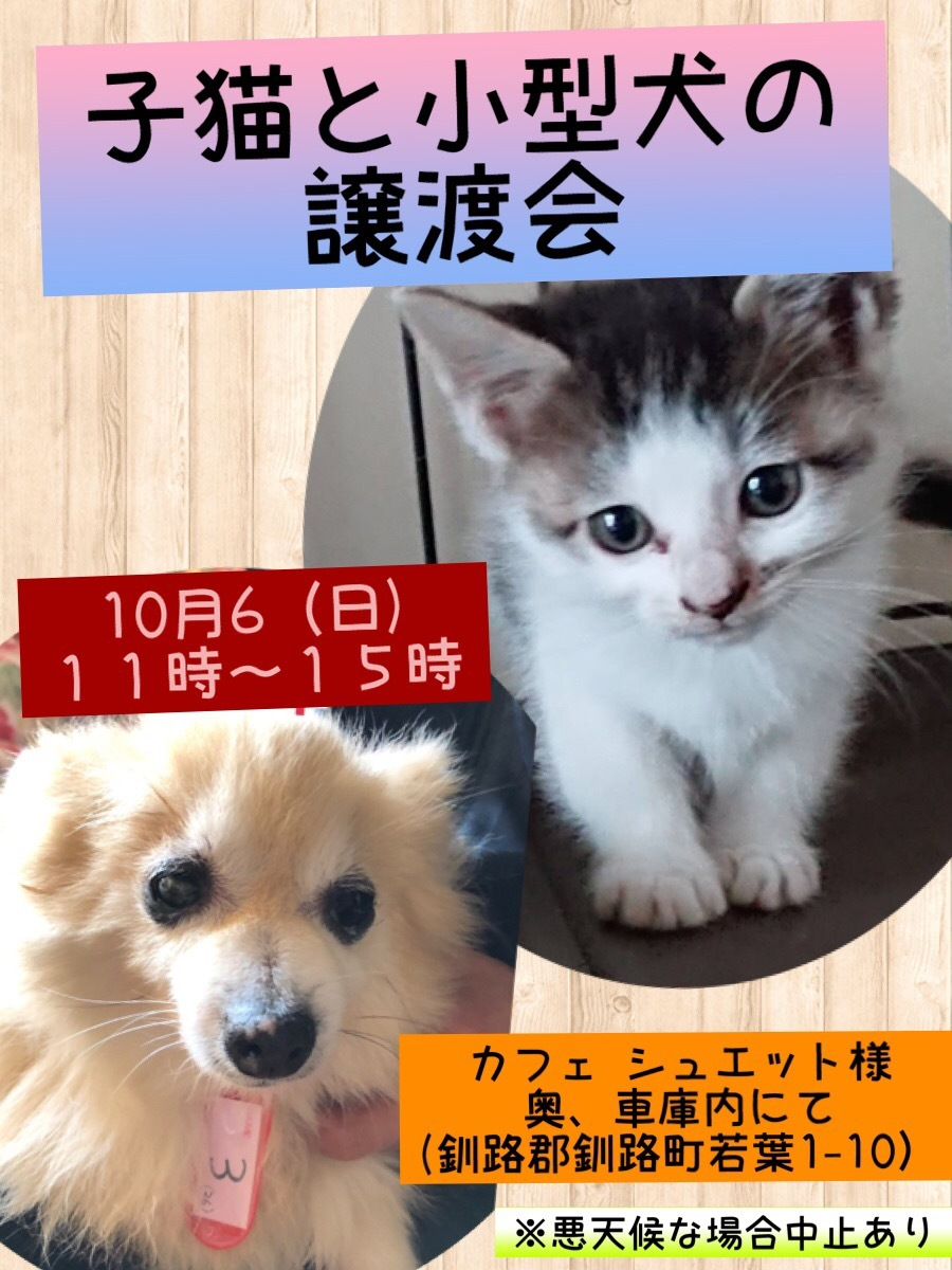 f:id:kugatsusuiyou:20191005002022j:plain