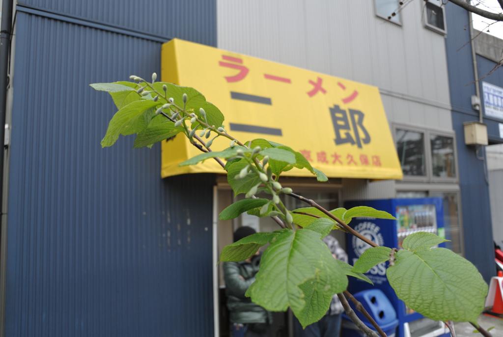 f:id:kuisugimasa:20170422170339j:plain