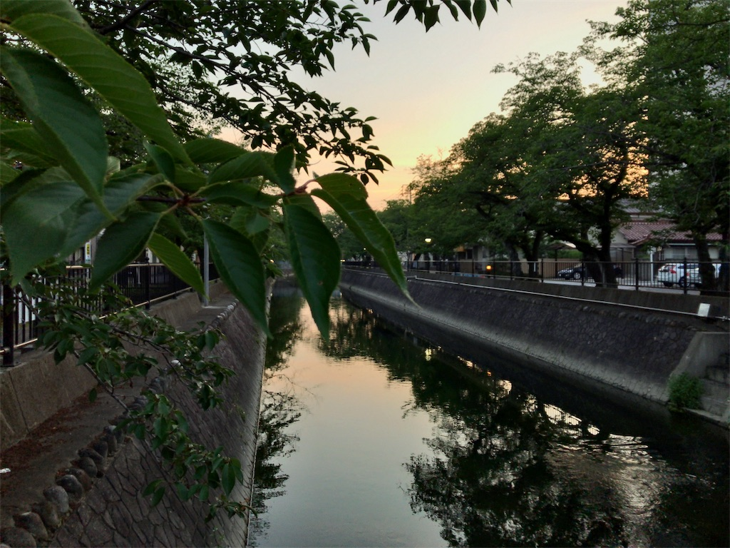 f:id:kuisugimasa:20190626120349j:image