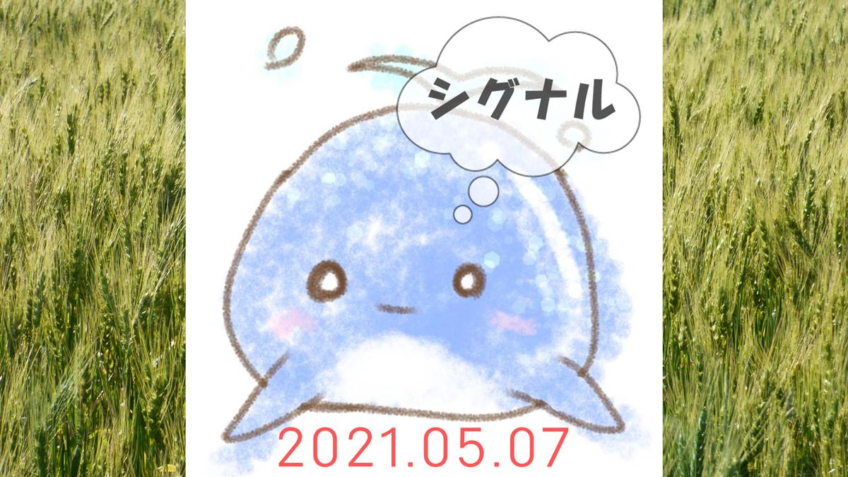 2021年5月7日のシグナル「寄り引け0枚の時」