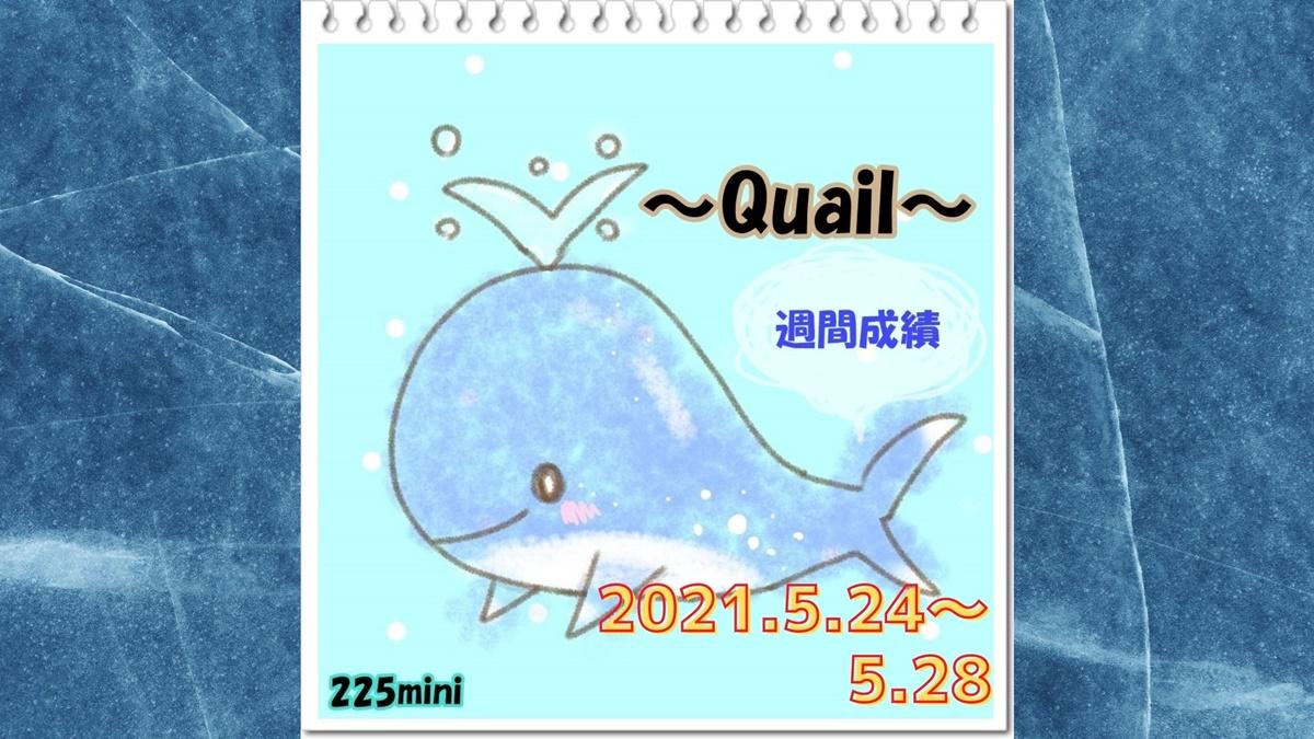 ~Quail~2021年5月24日~5月28日の週間成績