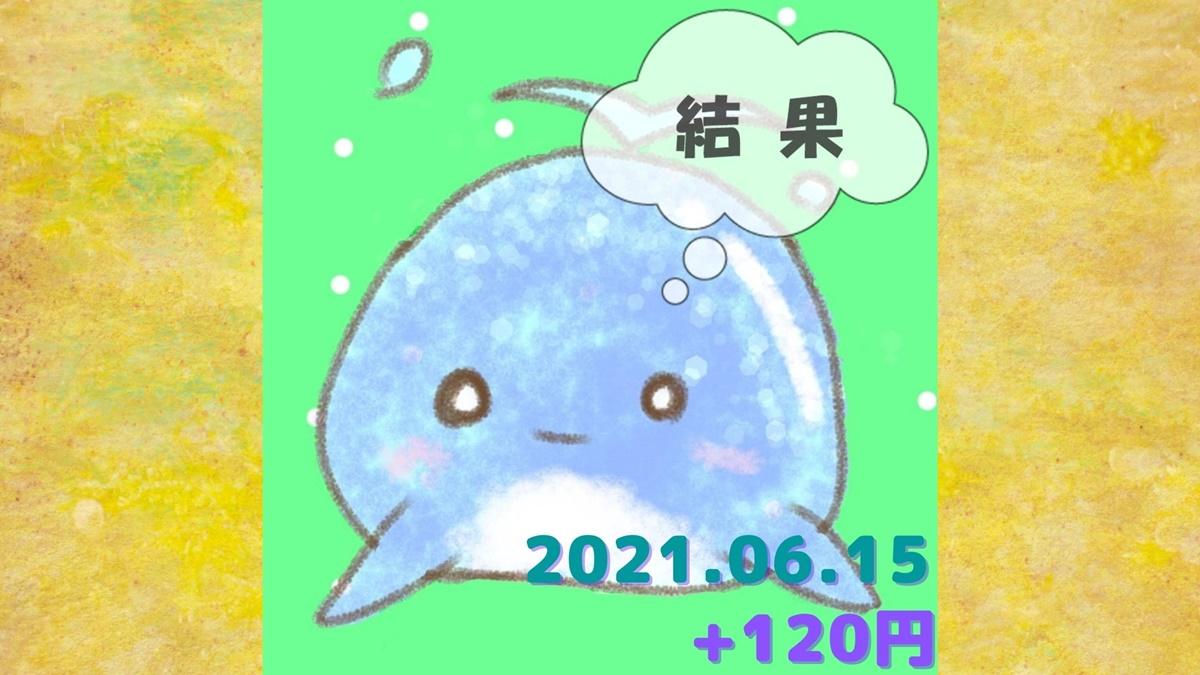 2021年6月15日の結果「寄り引け0枚の時」