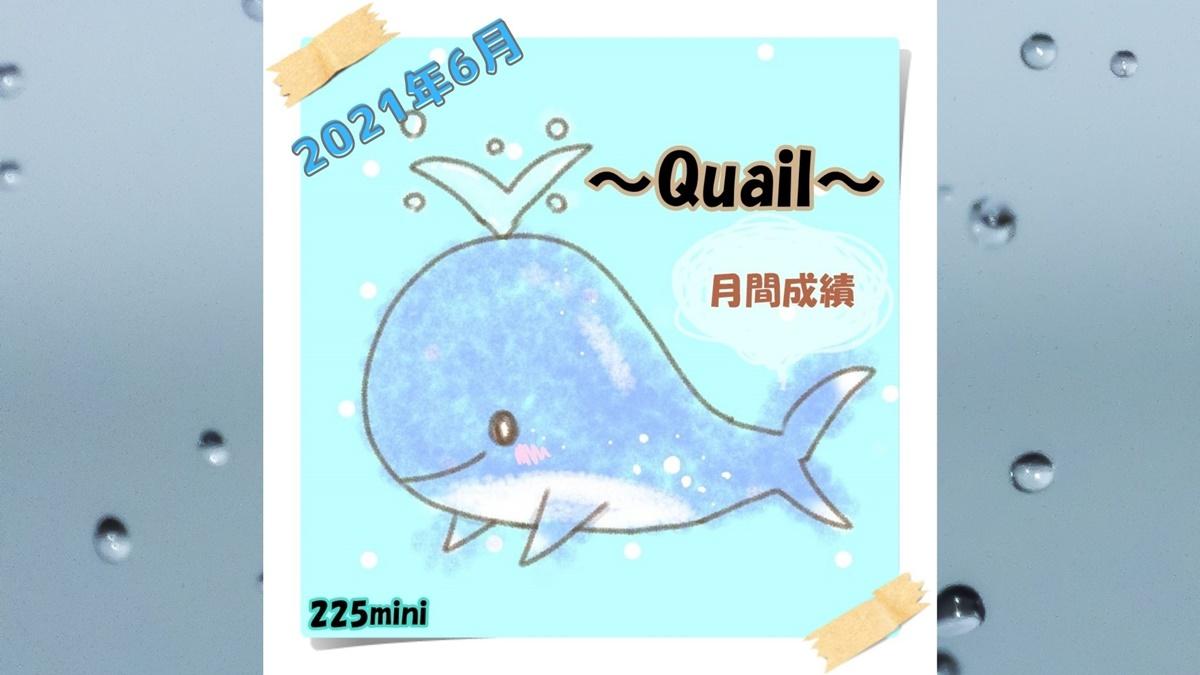 ~Quail~2021年6月の成績