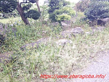 f:id:kukiha-na:20190905222939p:plain