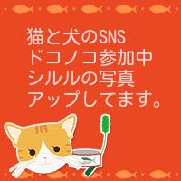 ドコノコ・シルル