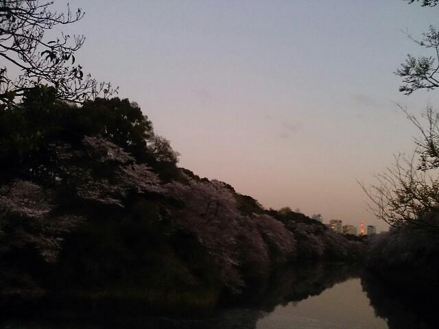 f:id:kukikukikun:20170414131052j:plain