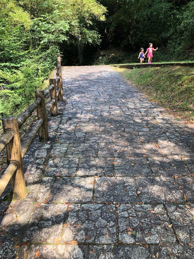 f:id:kukitanorikazu:20190822020613j:image