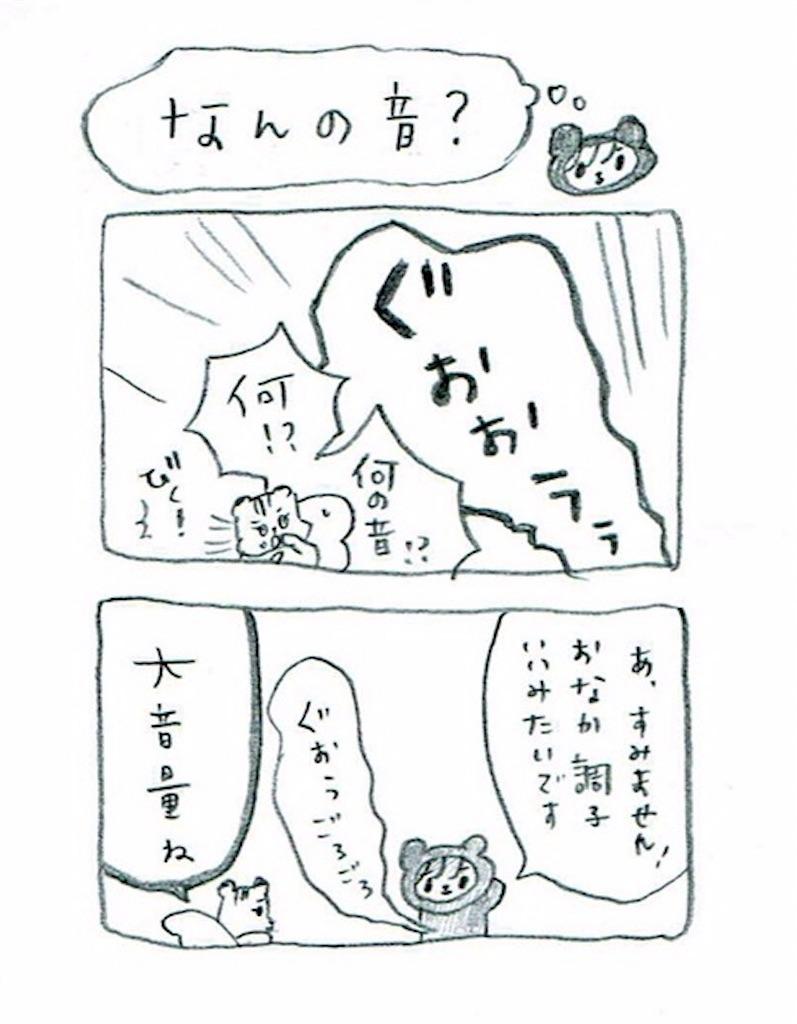 f:id:kuma-risu:20161020141545j:image