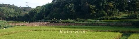 f:id:kuma-yome:20161009224120j:plain
