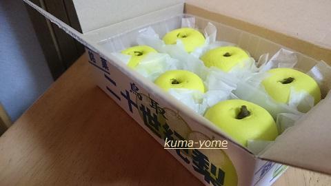 f:id:kuma-yome:20161021233144j:plain