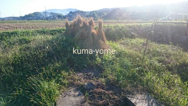 f:id:kuma-yome:20161024214005j:image