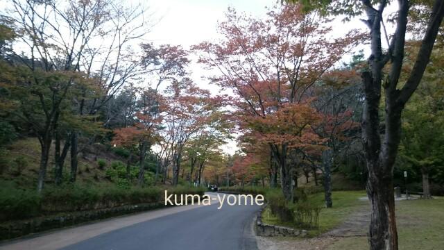 f:id:kuma-yome:20161102190240j:image
