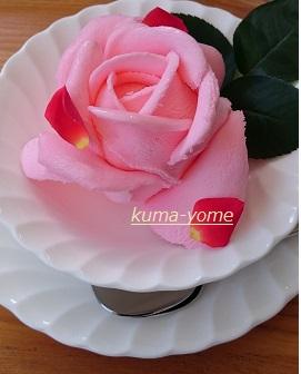 f:id:kuma-yome:20161113204827j:plain