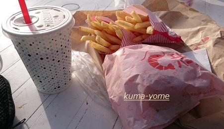 f:id:kuma-yome:20161113205850j:plain
