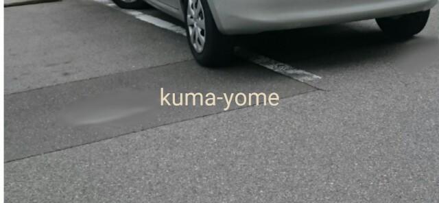 f:id:kuma-yome:20161121163326j:image