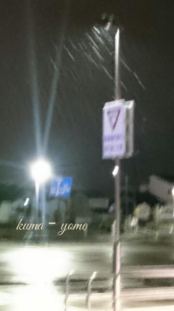 f:id:kuma-yome:20161215003358j:image