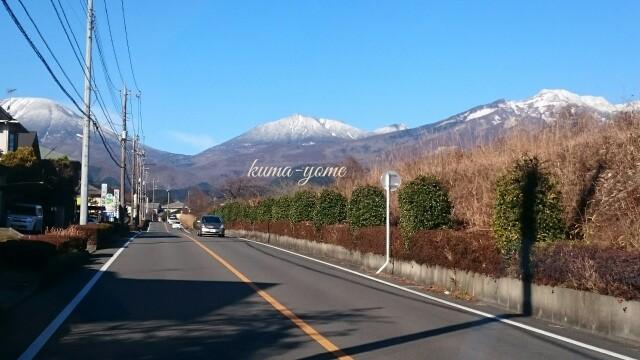 f:id:kuma-yome:20161219000338j:image