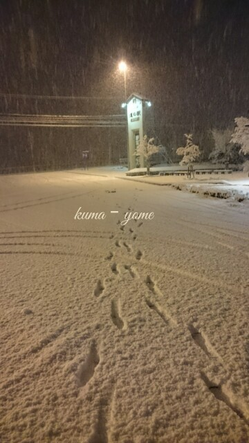 f:id:kuma-yome:20170114085408j:image