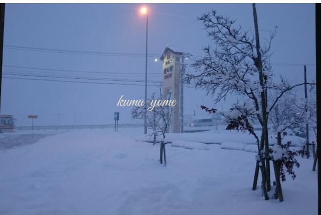 f:id:kuma-yome:20170115200703j:image