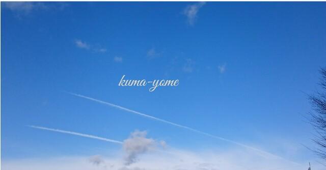 f:id:kuma-yome:20170117204123j:image