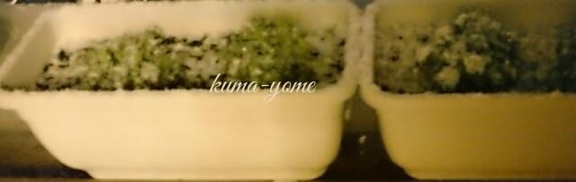 f:id:kuma-yome:20170210221729j:image