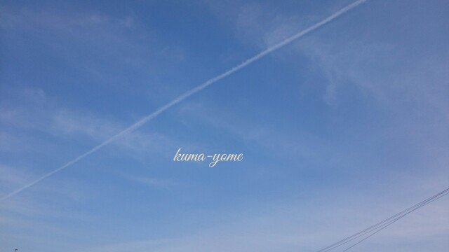f:id:kuma-yome:20170226153825j:image