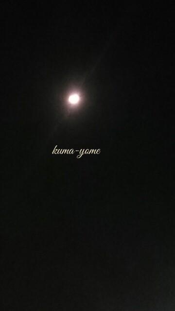 f:id:kuma-yome:20170305003411j:image